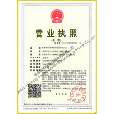 Business license (copy)