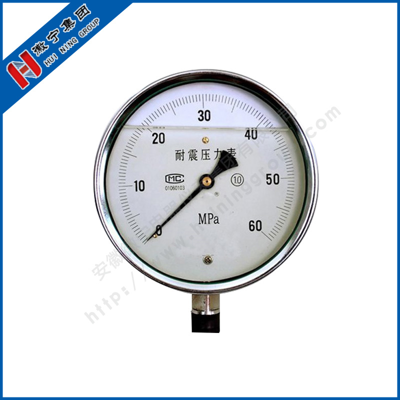 YN vibration proof pressure gauge