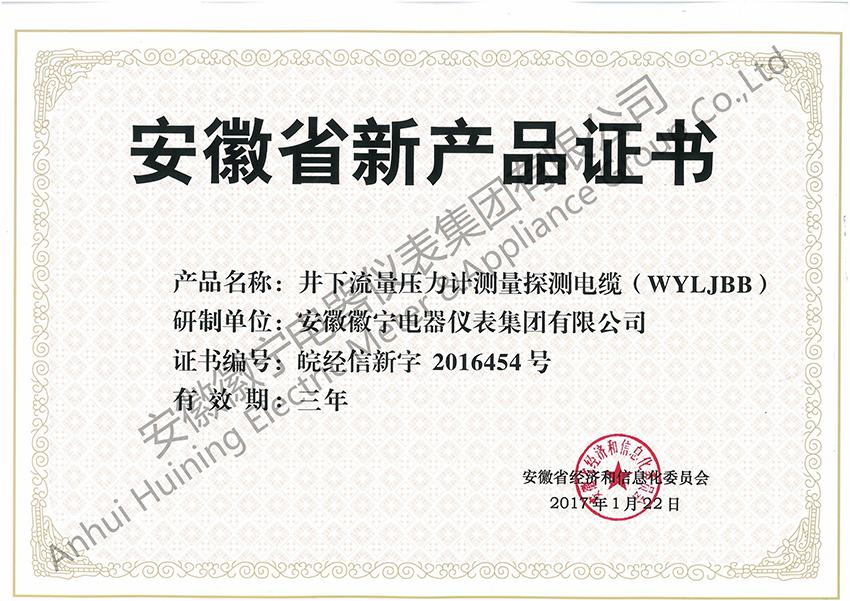 井下流量压力计测量探测雷火电竞app ios(WYLJBB)